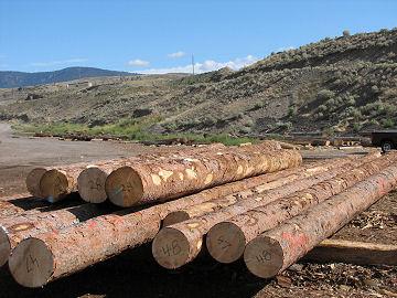 log home building system