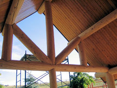 Log trusses & accents